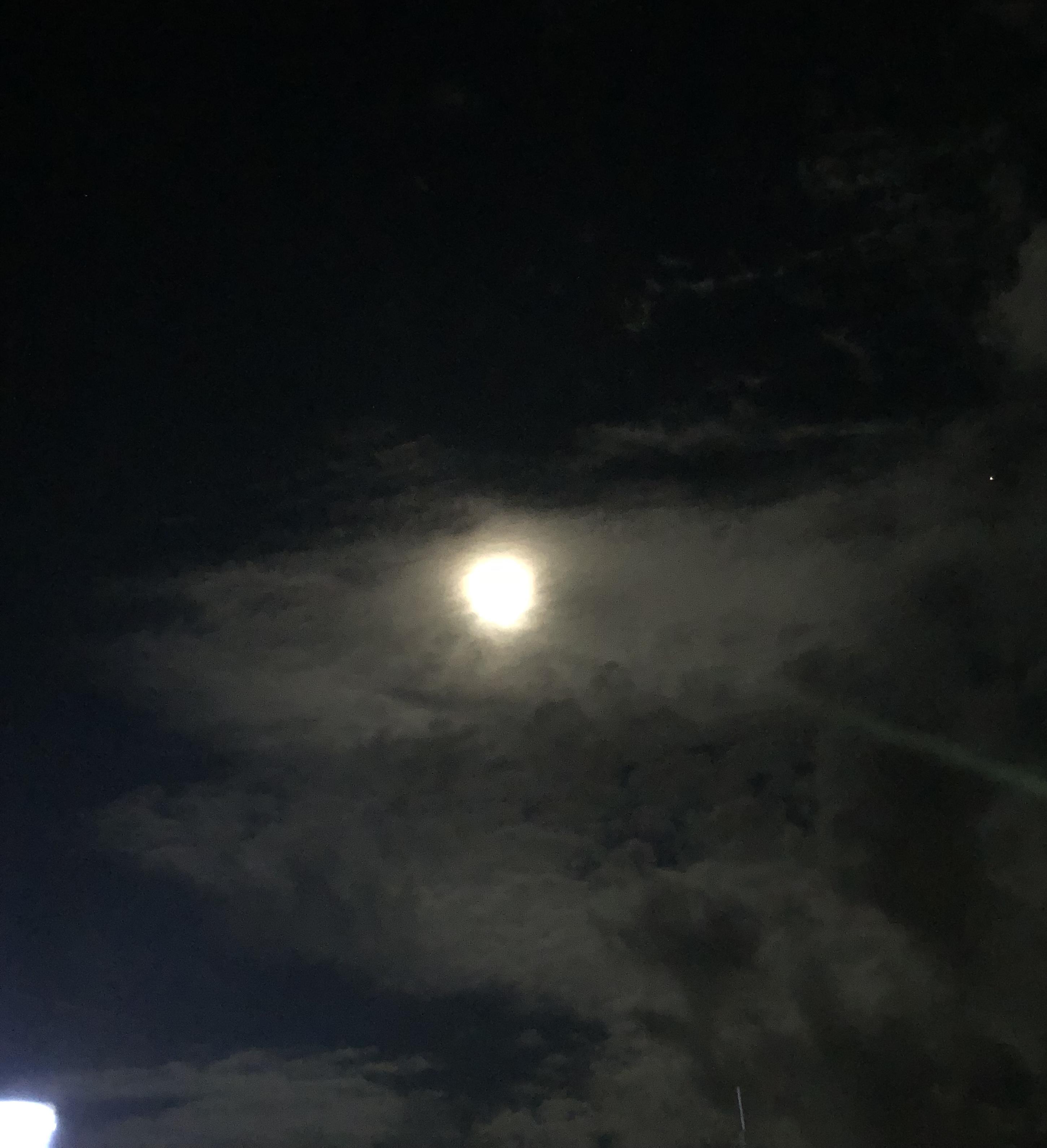 綺麗な満月でした